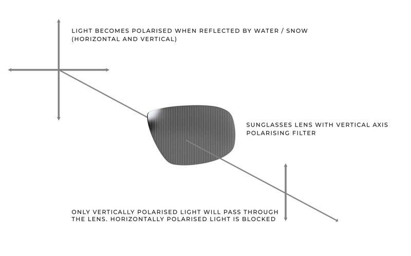 polarisarion-infographic